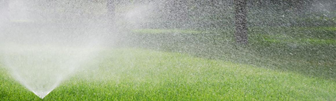 Entretien jardins aqua2a for Entretien jardin wemmel